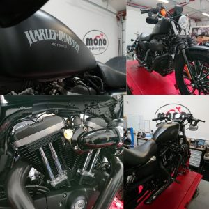 Katy set to task with detailing the Harley Davidson Sportster.